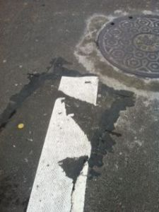 Pavement tar and white dividing line create koala hugging tree