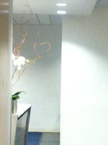 orchid plant peeking over desk and forming the shape of a heart